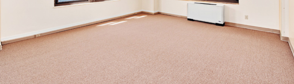 Find Professional Carpet Cleaning Services in Sydney